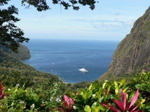 Ladera View from Room