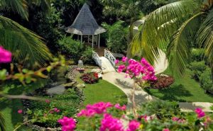 anniversary in Jamaica tropical garden
