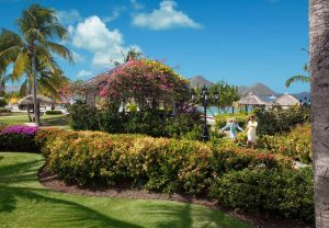 St. Lucia trip review