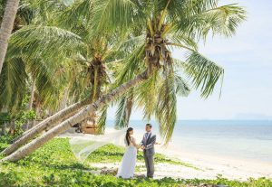 Bahamas boutique hotels bride and bridegroom under tree