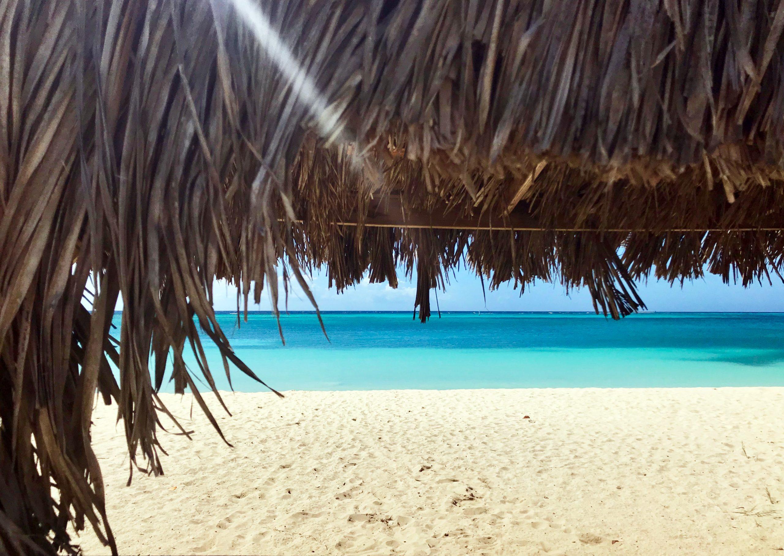 rodgers beach aruba palapa ocean